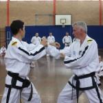 Mr Ian Britton and Master Rhee demonstrate at the ITFA IIC 2015