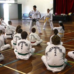 Master Rhee teaching half facing body position at Rockhampton Master Class 2013