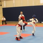 ITFA Competition Sparring