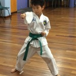 Ultimo Taekwon-Do Student