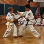 Jason Zhou 3 Step Sparring with a Junior