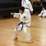 Jason Zhou Sitting Stance Punch