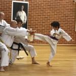 Jason Zhou breaking Reverse Turning Kick